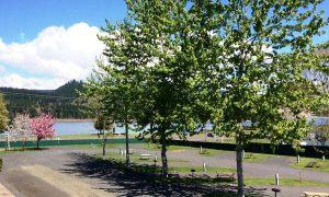 Foster Lake RV Resort Parking Lot   Mid Oregon Credit Union